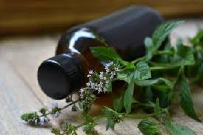 Customised Liquid Herbal Blends