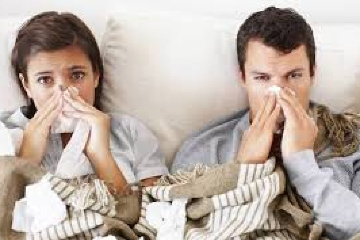 Beat the Winter flu with Herbs Online Shop